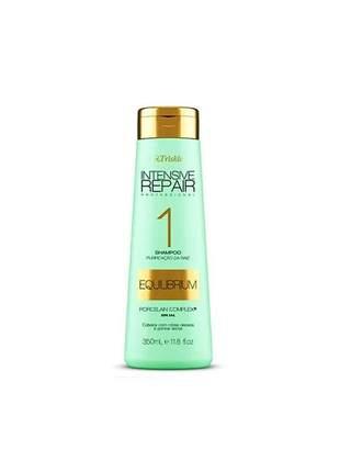 Shampoo equilibrium intensive repair triskle 350ml